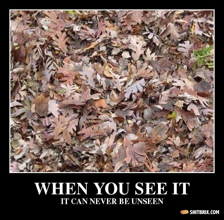 Can You See It Funny