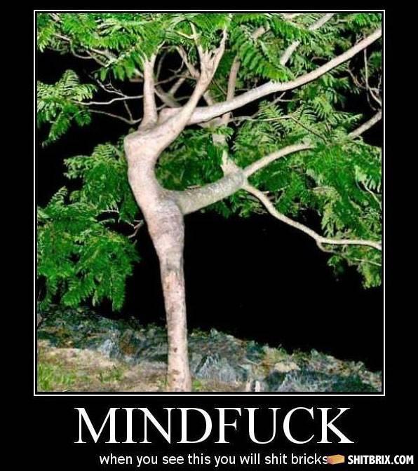 SHiT BRiX hahahaha Mindfuck-tree-72806